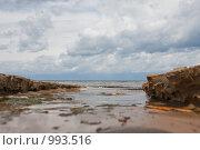 Купить «Море», фото № 993516, снято 19 августа 2018 г. (c) Александр Трушкин / Фотобанк Лори