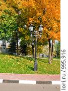Купить «Фонарный столб возле храма Христа Спасителя», эксклюзивное фото № 995916, снято 4 октября 2008 г. (c) Журавлев Андрей / Фотобанк Лори