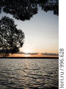Купить «Летний пейзаж (фокус на переднем плане)», фото № 996628, снято 17 июля 2009 г. (c) Юрий Бельмесов / Фотобанк Лори