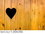 Купить «Деревенский туалет», фото № 1004056, снято 4 июля 2009 г. (c) Алексей Лебедев / Фотобанк Лори