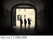 Купить «Силуэты», фото № 1008908, снято 13 июня 2009 г. (c) Кочеткова Галина / Фотобанк Лори