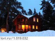 Деревянный дом в ночном лесу. Стоковое фото, фотограф Losevsky Pavel / Фотобанк Лори