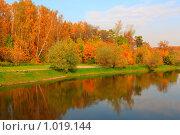 Купить «Осень в парке», фото № 1019144, снято 6 октября 2008 г. (c) Losevsky Pavel / Фотобанк Лори