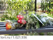Купить «Букет роз на скамейке», эксклюзивное фото № 1021936, снято 7 августа 2009 г. (c) Катерина Белякина / Фотобанк Лори