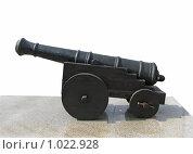 Пушка образца XVIII века. Стоковое фото, фотограф Евгений Зиновьев / Фотобанк Лори