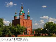 Купить «Собор, город Сарапул», эксклюзивное фото № 1029888, снято 3 августа 2009 г. (c) Кучкаев Марат / Фотобанк Лори