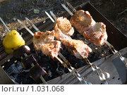 Купить «Мясо крупными кусками на мангале», эксклюзивное фото № 1031068, снято 10 августа 2009 г. (c) Александр Щепин / Фотобанк Лори
