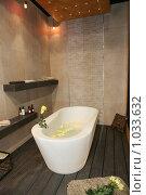 Купить «Роскошный интерьер ванной комнаты», фото № 1033632, снято 31 марта 2009 г. (c) Журавлева Виктория / Фотобанк Лори