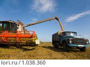 Купить «Перегрузка», фото № 1038360, снято 10 августа 2009 г. (c) Юрий Викулин / Фотобанк Лори