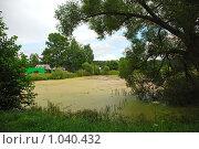 Купить «Летний пейзаж», эксклюзивное фото № 1040432, снято 25 июля 2009 г. (c) lana1501 / Фотобанк Лори
