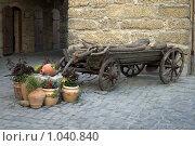 Старая телега (2009 год). Стоковое фото, фотограф Виктор Косьянчук / Фотобанк Лори