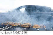 Купить «Пикник на обочине», эксклюзивное фото № 1047516, снято 22 августа 2009 г. (c) ФЕДЛОГ / Фотобанк Лори