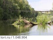 Мост над речкой. Стоковое фото, фотограф евгений блинов / Фотобанк Лори