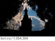Силуэт старой башни. Стоковое фото, фотограф Наталья Ревкина / Фотобанк Лори
