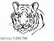 Купить «Белый тигр.Рисунок», иллюстрация № 1055740 (c) Галина Щурова / Фотобанк Лори