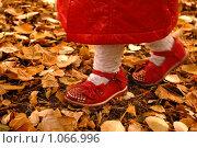 Детские ножки в красных сандалиях и белых носочках на осенней листве. Стоковое фото, фотограф Полина Бублик / Фотобанк Лори