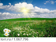Купить «Зеленый луг», фото № 1067796, снято 22 января 2019 г. (c) Василий Нижников / Фотобанк Лори