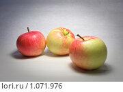 Купить «Яблоки на сером фоне», фото № 1071976, снято 5 сентября 2009 г. (c) Stepanuk Valera / Фотобанк Лори