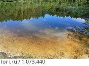 Отражение неба и леса в озере. Стоковое фото, фотограф Bushuev Sergey / Фотобанк Лори