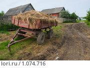 Прицеп с сеном. Стоковое фото, фотограф Евгений Нелихов / Фотобанк Лори
