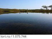 Купить «Лесное озеро», фото № 1075744, снято 23 августа 2009 г. (c) Андрей Субач / Фотобанк Лори