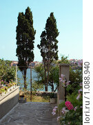 Купить «Два кипариса», фото № 1088940, снято 15 августа 2009 г. (c) Купченко Владимир Михайлович / Фотобанк Лори
