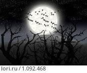 Купить «Ночной лес», иллюстрация № 1092468 (c) Наталья Быстрая / Фотобанк Лори