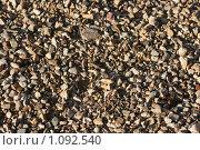 Купить «Каменистый пляж», фото № 1092540, снято 12 сентября 2009 г. (c) Устинов Дмитрий Николаевич / Фотобанк Лори