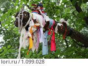Ленточки. Стоковое фото, фотограф ПАВЕЛ ЧУПРИНА / Фотобанк Лори