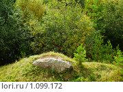 Камень. Стоковое фото, фотограф 1 / Фотобанк Лори