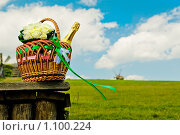 Пикник на природе. Стоковое фото, фотограф Хижняк Екатерина / Фотобанк Лори