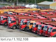 Купить «Новые китайские грузовики для продажи», фото № 1102108, снято 17 сентября 2009 г. (c) Кекяляйнен Андрей / Фотобанк Лори