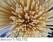 Букет из спагетти на синем фоне. Стоковое фото, фотограф Екатерина Шашнина / Фотобанк Лори