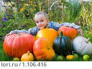 Купить «Мальчик с тыквами», фото № 1106416, снято 21 сентября 2009 г. (c) Елена Блохина / Фотобанк Лори