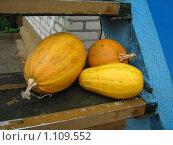 Купить «Три тыквы на лестнице», фото № 1109552, снято 24 сентября 2008 г. (c) Юлианна Аракчеева / Фотобанк Лори