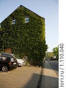 Зеленый дом (2009 год). Редакционное фото, фотограф Юлия Новикова / Фотобанк Лори