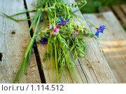 Купить «Букет полевых цветов и злаков на деревянной ступеньке», фото № 1114512, снято 11 июля 2009 г. (c) Анастасия Золотницкая / Фотобанк Лори