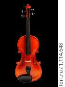 Купить «Скрипка на черном фоне», фото № 1114648, снято 23 мая 2008 г. (c) Александр Паррус / Фотобанк Лори