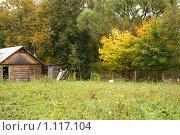 Осень, баня. Стоковое фото, фотограф Виктор Агеев / Фотобанк Лори