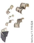 Деньги, вылетающие из кошелька. Стоковое фото, фотограф Хижняк Екатерина / Фотобанк Лори