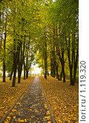 Осень. Аллея в парке. Дорожка к калитке, ведущая в никуда... Стоковое фото, фотограф Светлана Силецкая / Фотобанк Лори