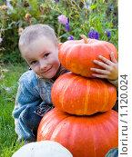 Купить «Мальчик с тыквами», фото № 1120024, снято 21 сентября 2009 г. (c) Елена Блохина / Фотобанк Лори