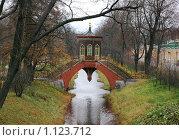 Купить «Крестовый мост, Пушкин», фото № 1123712, снято 25 октября 2008 г. (c) Смыгина Татьяна / Фотобанк Лори
