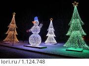 Зимний Петербург (2009 год). Стоковое фото, фотограф Сизова Екатерина / Фотобанк Лори