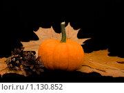 Купить «Тыква, кленовые листья и шишки», фото № 1130852, снято 27 сентября 2009 г. (c) Asja Sirova / Фотобанк Лори