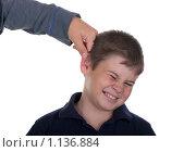 Купить «Мальчика тянут за ухо на белом фоне», фото № 1136884, снято 2 октября 2009 г. (c) Заметалов Андрей / Фотобанк Лори