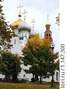 Православный собор. Стоковое фото, фотограф Sergey Kashchavtsev / Фотобанк Лори