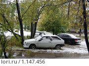 Купить «Первый снег в Санкт-Петербурге. Дождь со снегом, штормовое предупреждение.», фото № 1147456, снято 12 октября 2009 г. (c) Елена Соломонова / Фотобанк Лори