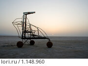Повозка в соленой пустыне на рассвете (2009 год). Стоковое фото, фотограф Тамара Нагиева / Фотобанк Лори