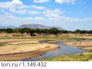 Река Руаха в африканской саванне. Стоковое фото, фотограф Димитрий Сухов / Фотобанк Лори